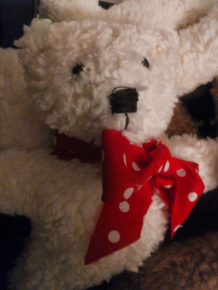 ein ganz lieber Eisbärenbaby
