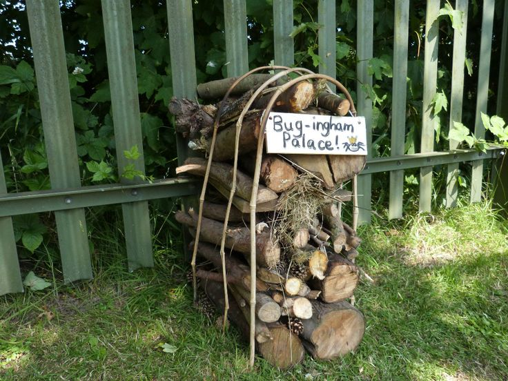 Gallery : OUR BUG HOTELS