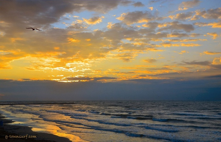 Serenity Now... Sunrise this morning on The Island...: Mornings Sunrises, Sunrise Sunsets, Sunrises Sunsets