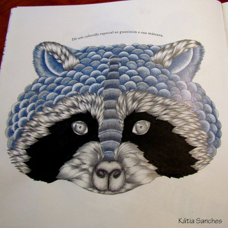 Animal Kingdom Colouring Book By Millie Marotta Pages S Ideas Books