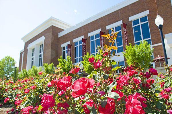 Union roses - Mississippi State University