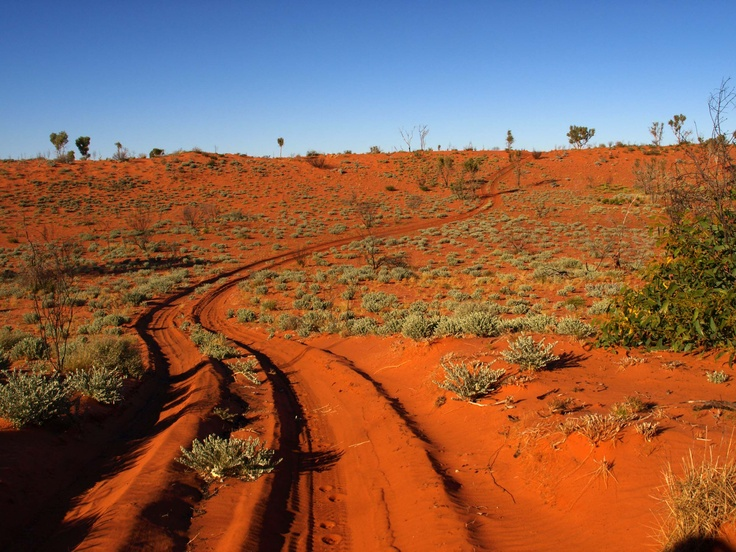 A red ribbon of two wheel tracks winding over the sand hills of the Great Sandy Desert
