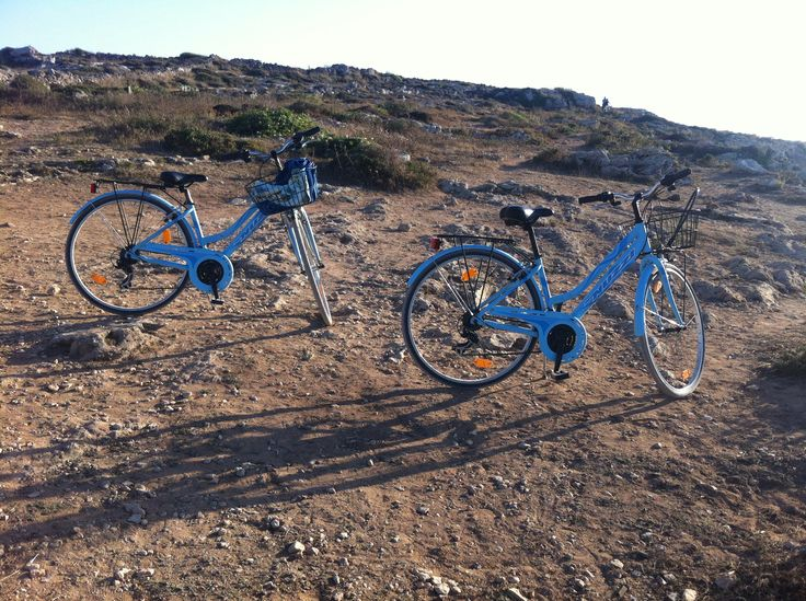 Travelling with bikes