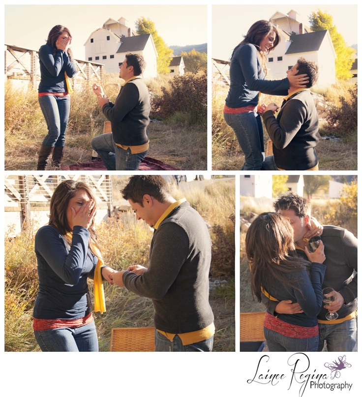 25+ Best Images About The Proposal On Pinterest