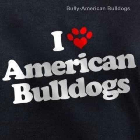 American Bulldogs - I don't just love them, I have one. <3 I need to put this on a shirt!