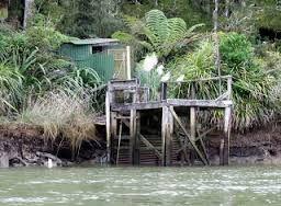 whitebait stands - Mokau River Google Search