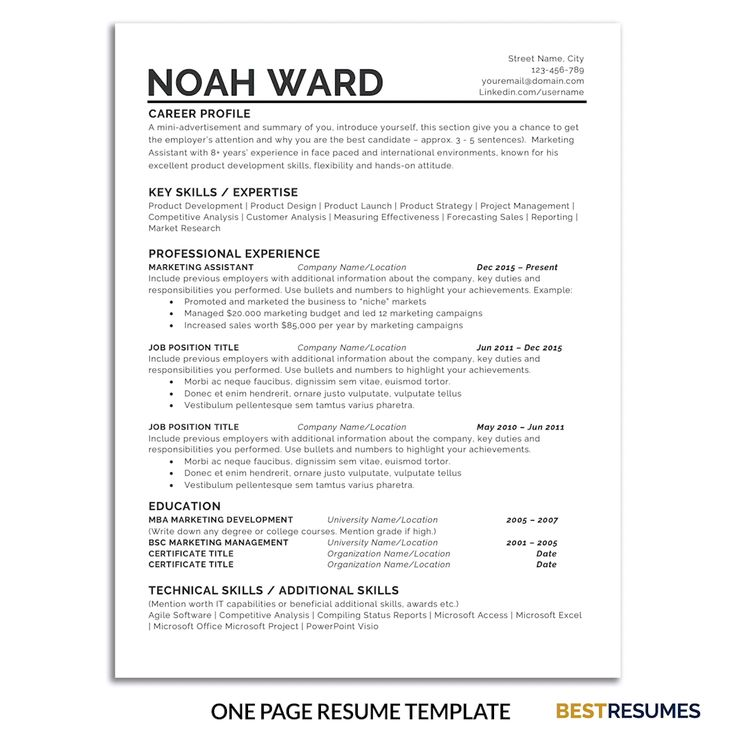 Business Plan Template Discover One Page Resume Template