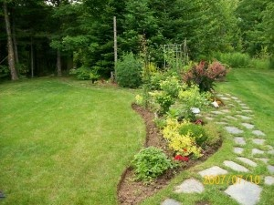 Large backyard landscaping hill