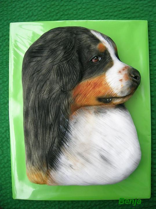 Bernský salašnický pes   dorty od mámy