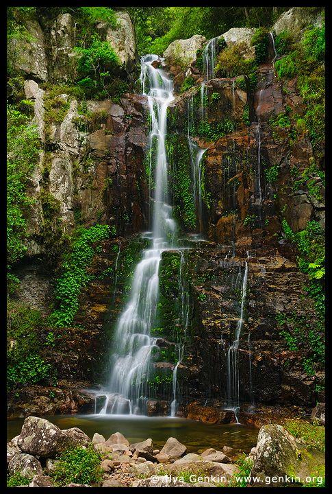 dewynter - Minnamurra Falls, Budderoo National Park, Illawarra, NSW, Australia