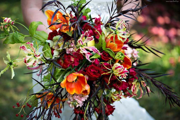 Bukiet Kwiatów, Róża, Tulipany, Orchidea, Alstroemeria