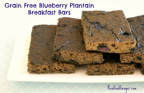 Recipe: Grain Free Blueberry Plantain Breakfast Bars (Paleo, Nut Free) post image