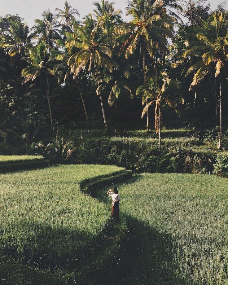 Gung Rana sur Instagram: #Bali