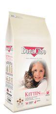 BonaCibo Kitten BonaCibo Kitten TAVUKLU (Hamsi ve Pirinç eşliğinde) Yavru Kedi Maması  Tüm ırklardan 12 aya kadar Yavru Kediler ile Hamilelik ve Emzirme Dönemindeki Kediler için hazırlanmıştır.  BonaCibo Kitten; 12 aya kadar, sütten kesilmiş ve hassas sindirim sistemine sahip Yavru kedinizin; sağlıklı vücut gelişimini sağlamak ve bağışıklık sistemini güçlendirmek üzere formüle edilmiştir.