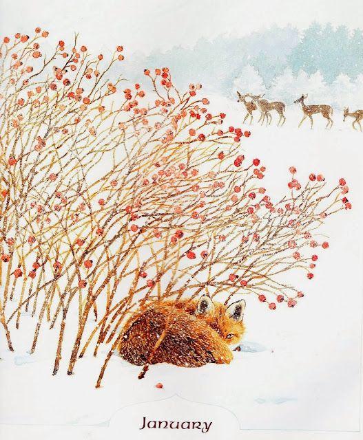 Fox by Mary Beth Owens