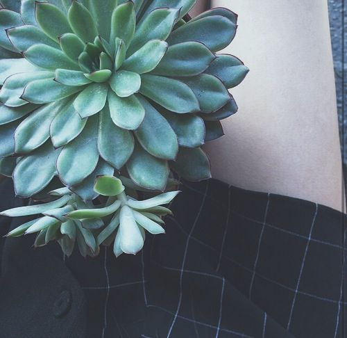 indie aesthetic - Google Search