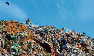 """""""Scenes from the world's largest rubbish dump""""    A moving essay by Lucy Walker after finishing her Oscar-nominated film, WASTE LAND."""