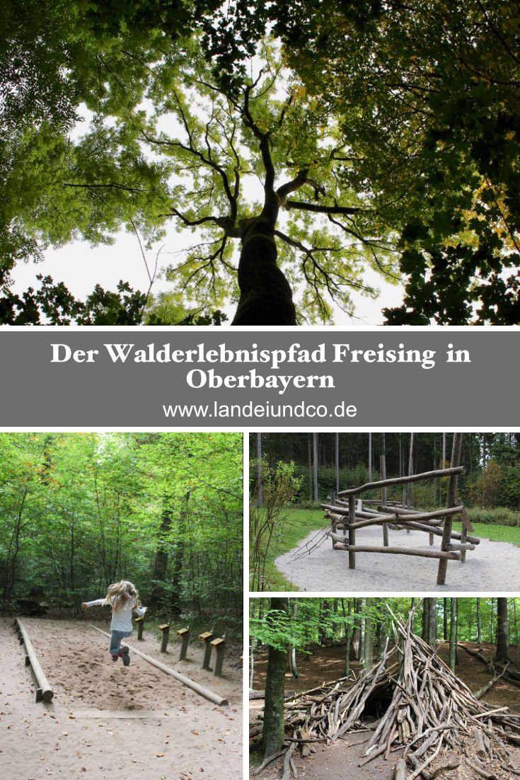 Der Walderlebnispfad Freising ist ein tolles Ausflugsziel für Familien, Kindergärten und Schulen. Spielen, entdecken, forschen, wandern, bauen, relaxen...ganz in der Nähe von München, Dachau, Landshut...