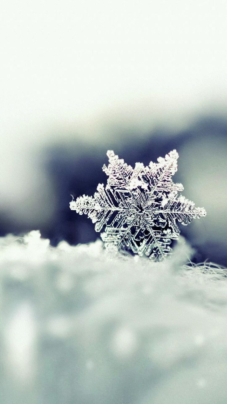 Icey Snowflake – Tap to see more #Beautiful Snow & #Snowflakes #Winter iPhone #W…
