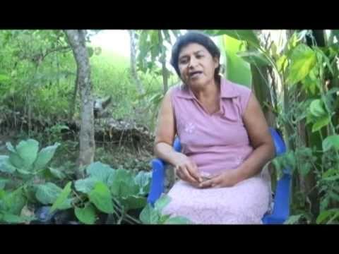 #PERMACULTURA - Red Rasa: La Agricultura Ecológica es mejor que la Agricultura Convencional https://www.youtube.com/watch?v=1zhMosmW62E