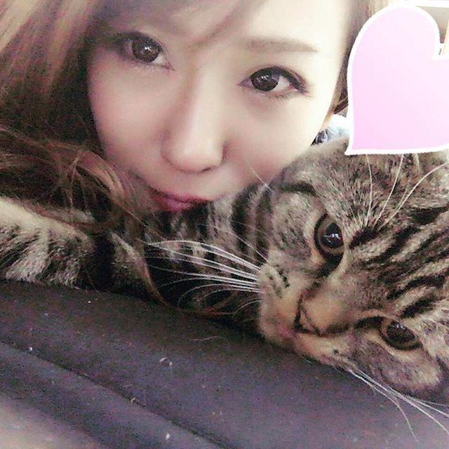 息子と☺️❤️ 似てるかな?わら  #猫#ねこ#cat#マンチカン#スコティッシュ#愛猫#息子#溺愛#love#可愛くて可愛くて仕方ない  #東京#TOKYO#歌舞伎町#新宿#キャバクラ#キャバ嬢 #グロッタ#GROTTAAZZURRA#彩瀬さいか  #followback #follow4likes#followme  #follow#followmeplease #followforfollow