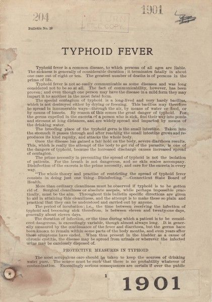 Essay on Typhoid: History, Signs and Symptoms