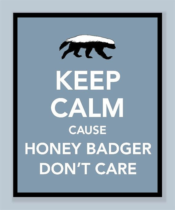 honey badger - I SO laughed out loud!! Hehehe