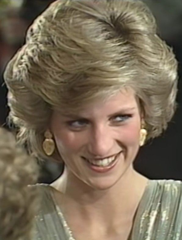 c8fe7d69e Pin by Esther Chua on Diana Gown in 2019 | Princess diana family ...