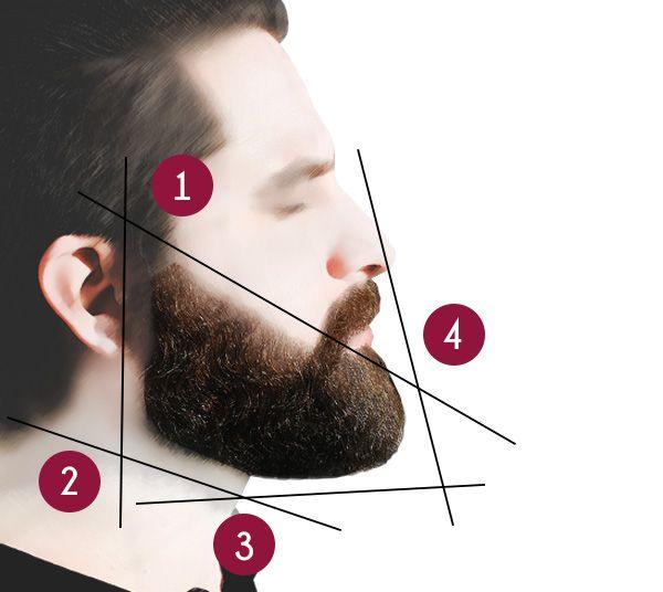 Die Konturen eines Vollbartes rasieren