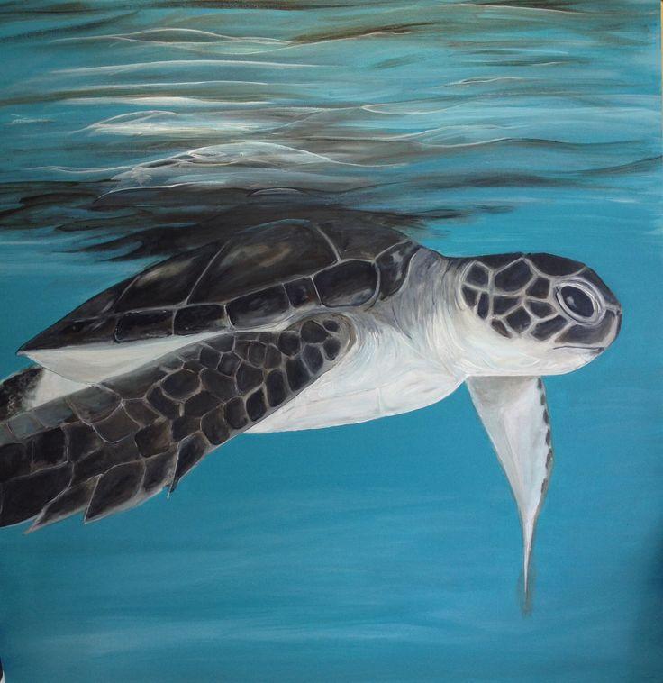 Turtle in the Maldives-Slater 14