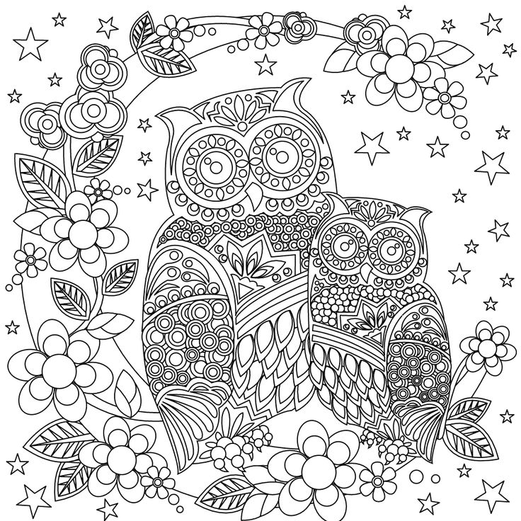 405 Best Images About Coloring Owl On Pinterest