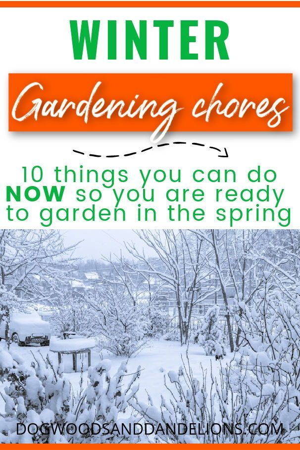 e5396defb842a886d43f6ae800218457 - What Can Gardeners Do In Winter
