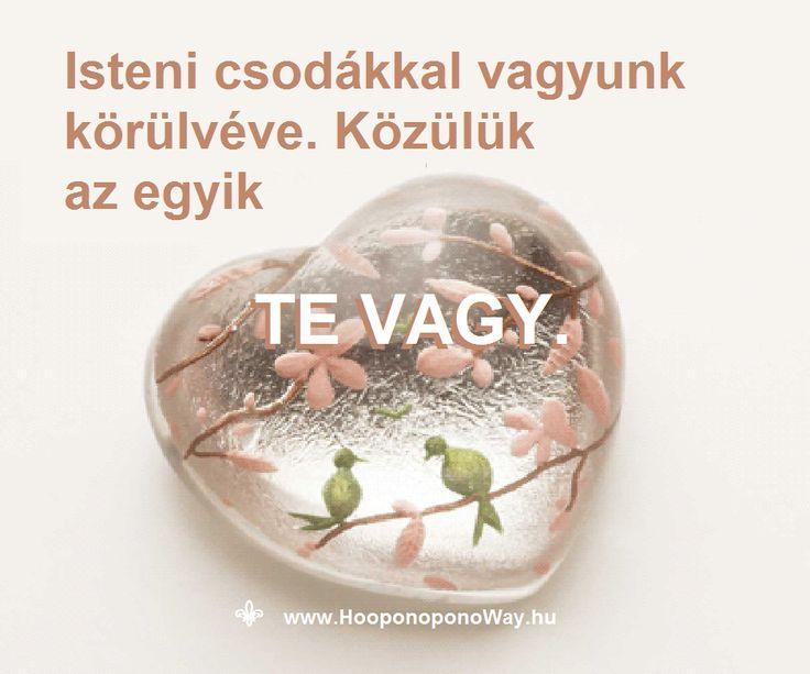 Hálát adok a mai napért. Isteni csodákkal vagyunk körülvéve. Megszoktuk. Észre sem vesszük. Mert ez a természetes. A csoda természetes. Közülük az egyik TE VAGY. Természetes. Köszönöm, hogy VAGY. Köszönöm. Szeretlek  ⚜ Ho'oponoponoWay Magyarország ⚜ www.HooponoponoWay.hu