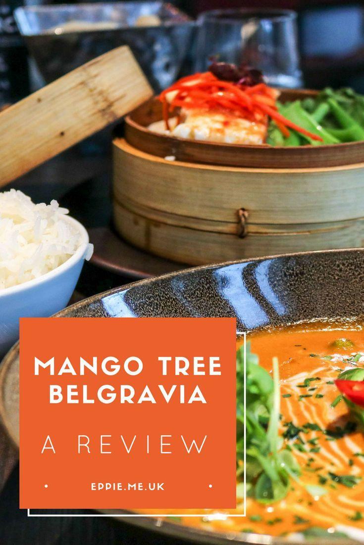 Best 25 asian restaurants ideas on pinterest asian for Aroi fine thai japanese cuisine