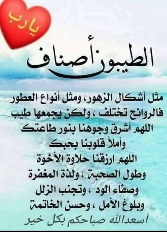 Pin By Chamsdine Chams On صباح مساء الخير Good Morning Arabic Profile Picture For Girls Profile Picture