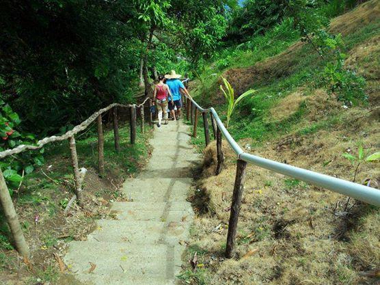 ¿Qué tal si esas caminatas que tanto te gustan hacer en la calle, las conviertes en recorridos ecológicos en Capurganá?