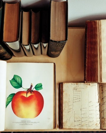 Pomologist, John Bunker relies on vintage texts to identify and piece together the history of the hundreds of antique apples he grows.Living October, Cities Sage, Stewart October, Book, The Cities, Martha Stewart, Stewart Living, October Issues, October Apples