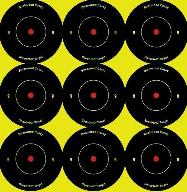 """Birchwood Casey Shoot N C Targets 1/"""" rifle airgun target practice"""