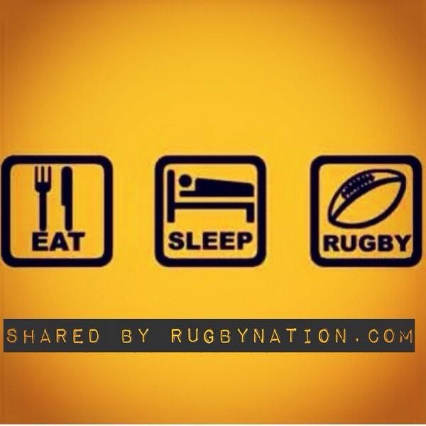 Old Rugby Rules: 87 Best Images About Rugby Memes On Pinterest