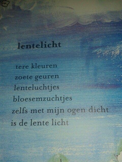Lentelicht door Mieke van Hooft uit Morgen komt de zon weer op.