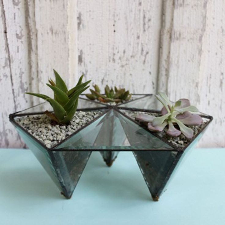 Gift her the gift that keeps on giving... or rather growing, with the Halona Glass tabletop prism, perfect for displaying plants, stones, or even jewelry!