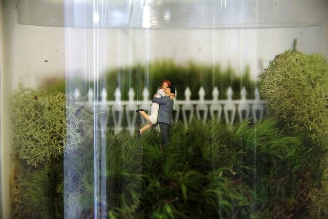 Twig Terrariums! by twigterrariums, via Flickr
