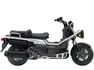 Honda Big Ruckus - this is the scooter we have