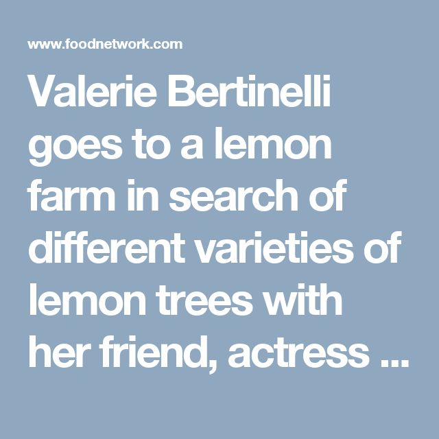 Valerie Bertinelli goes to a lemon farm in search of different varieties of lemon trees with her friend, actress Melissa Peterman. Then, she puts her favorite ingredient into a menu that is fun from soup to nuts -- to lemons! She whips up Greek Lemon Soup with Chicken, Crispy Pancetta Crostini with Arugula Lemon Pesto, Lemon Love Cake, and homemade Limoncello as a base for Lemonade Moscow Mules.