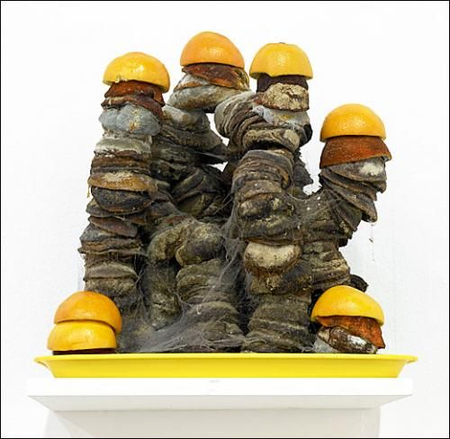 Michel Blazy, Sculpture (par Jean-Luc Blanc), 2003-2007. Ecorces d'oranges. Dimensions variables.