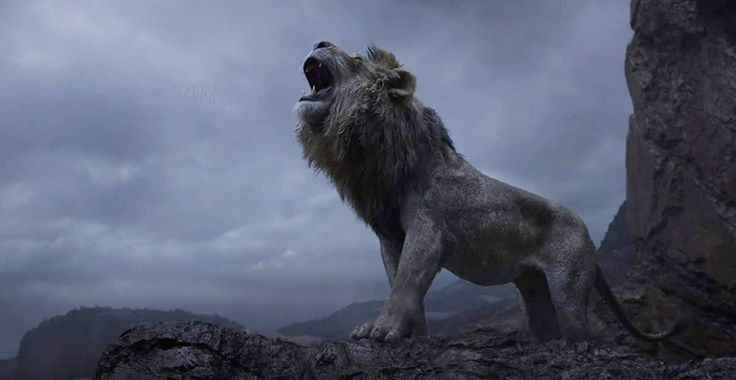 Lejonkungen 2019 123movies