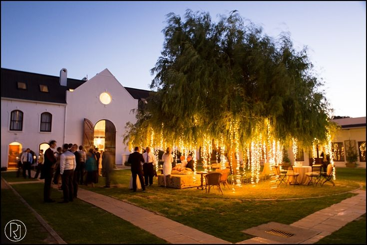 Banhoek Valley Zorgvliet Wedding � Tom and Tara