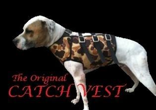 hog dog vest | Hog Hunting Strategies Cut Vests where and how to hunt hogs