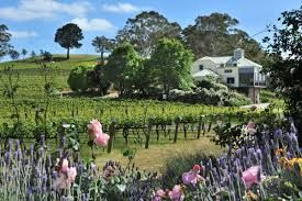 Many fantastic wineries are located in the Adelaide Hills.