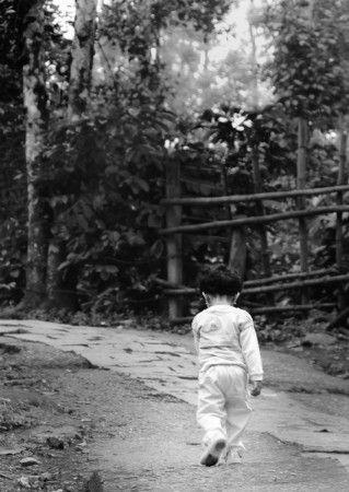 The Little Trekker by Suresh Menon